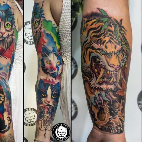 Color tattoos - What you need to know